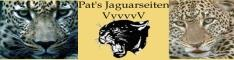 Pat's Jaguarseiten